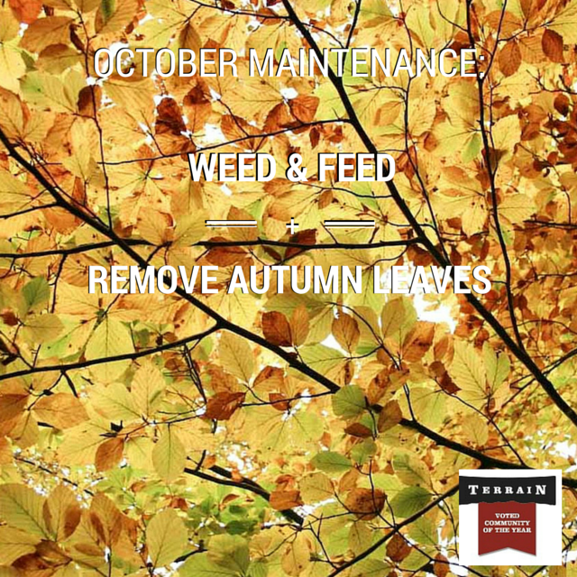 OCTOBER HOME MAINTENANCE